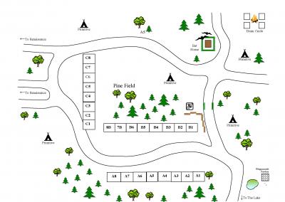 Pine Field